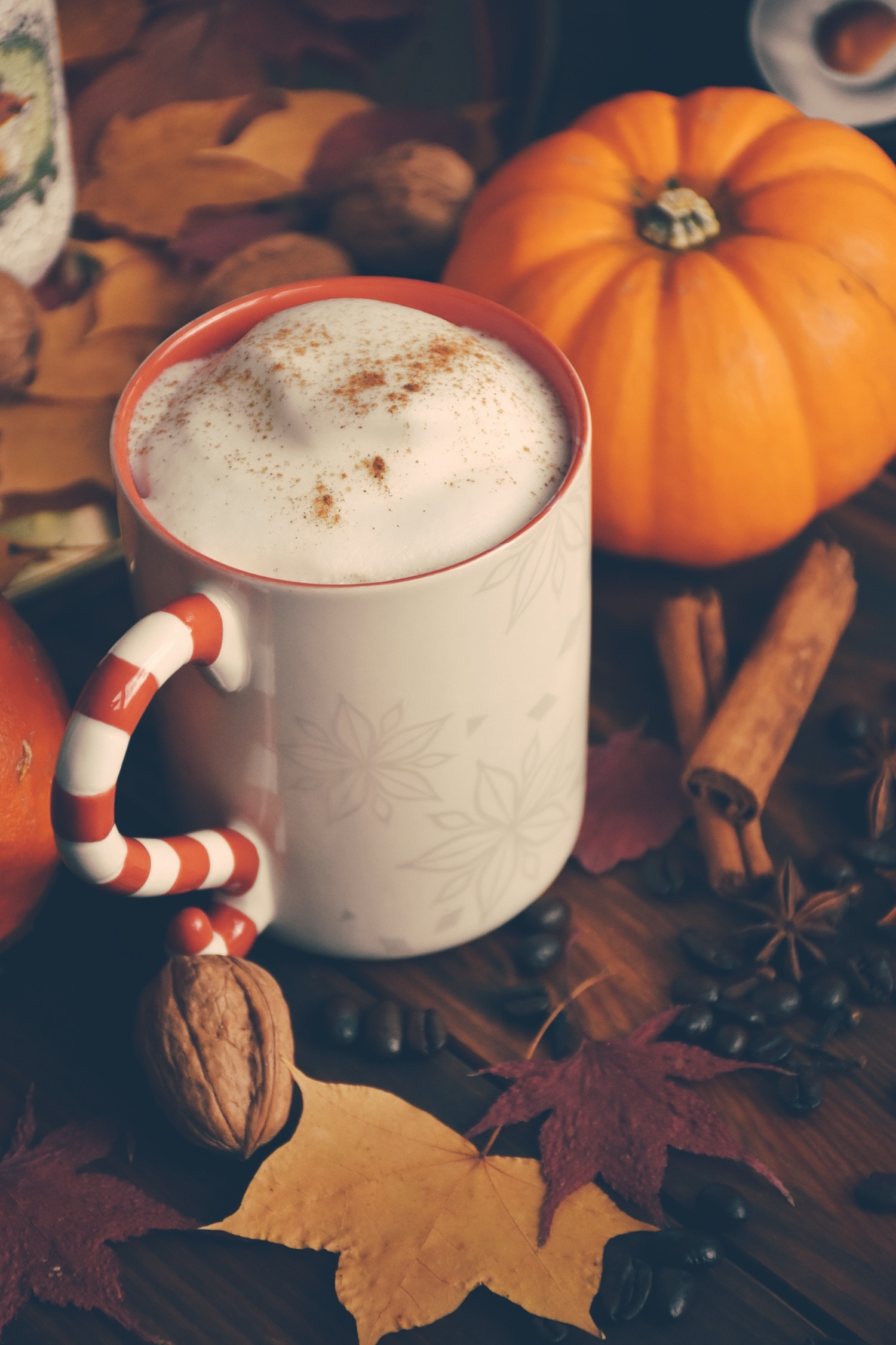 Fall Spice Coffee Latte