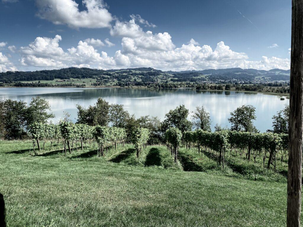 View over Pfäffikersee from the Jucker Farm, Seegräben, Zurich